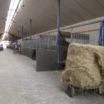 Dies ist unser Stall in einer Innenaufnahme